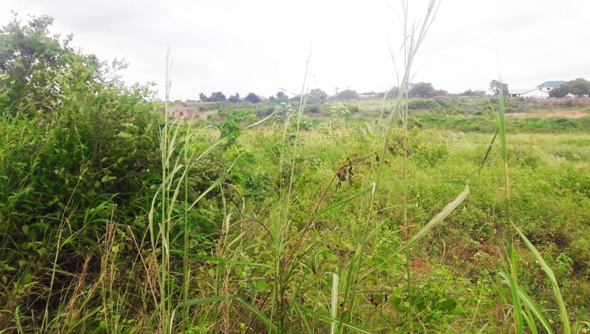LAND_FOR_SALE_at_Dodowa2-min