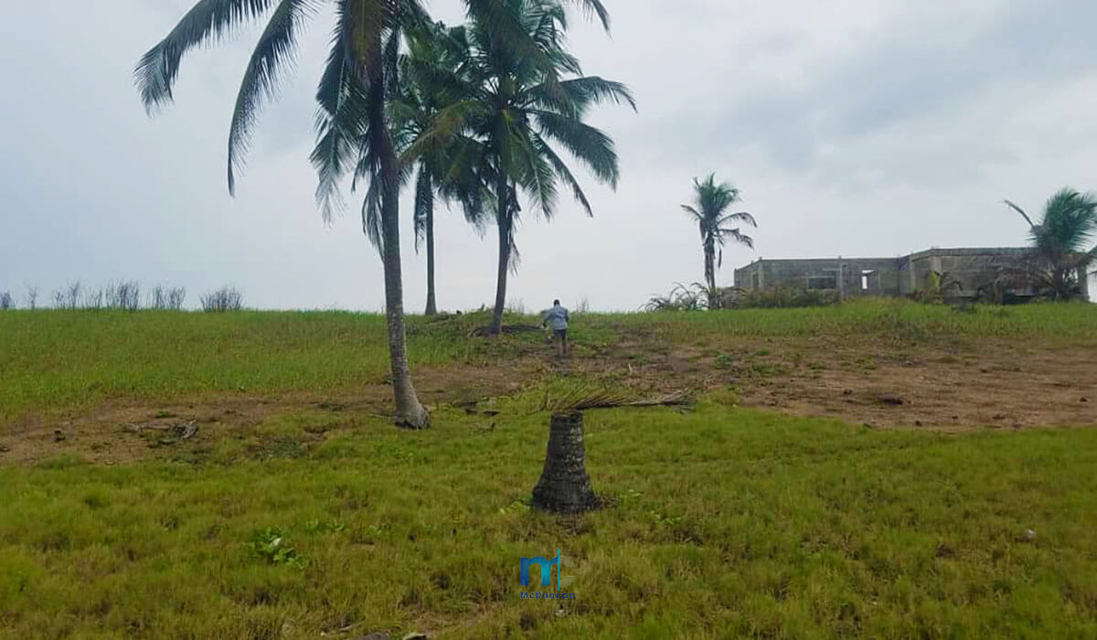 Property-Image--OceanFront-Land-For-Sale-In-AMPENYI-17--Mcduncan-Properties-min