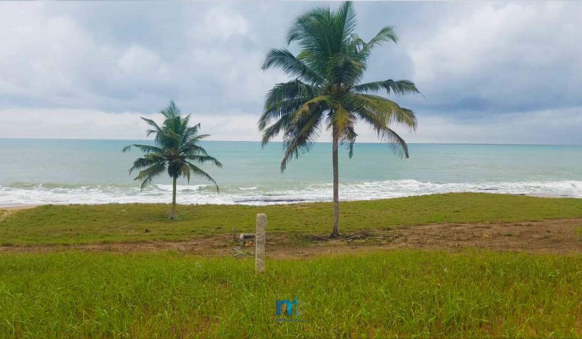 Property-Image--OceanFront-Land-For-Sale-In-AMPENYI-3--Mcduncan-Properties-min