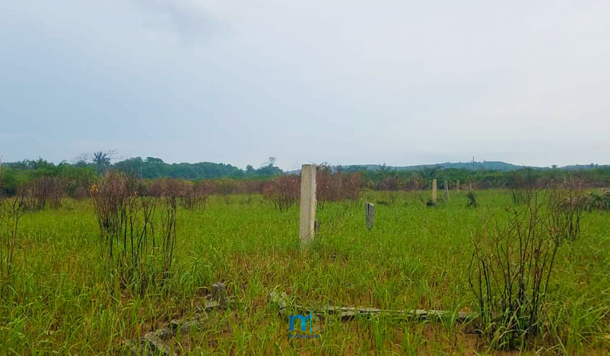 Property-Image--OceanFront-Land-For-Sale-In-AMPENYI-6--Mcduncan-Properties-min